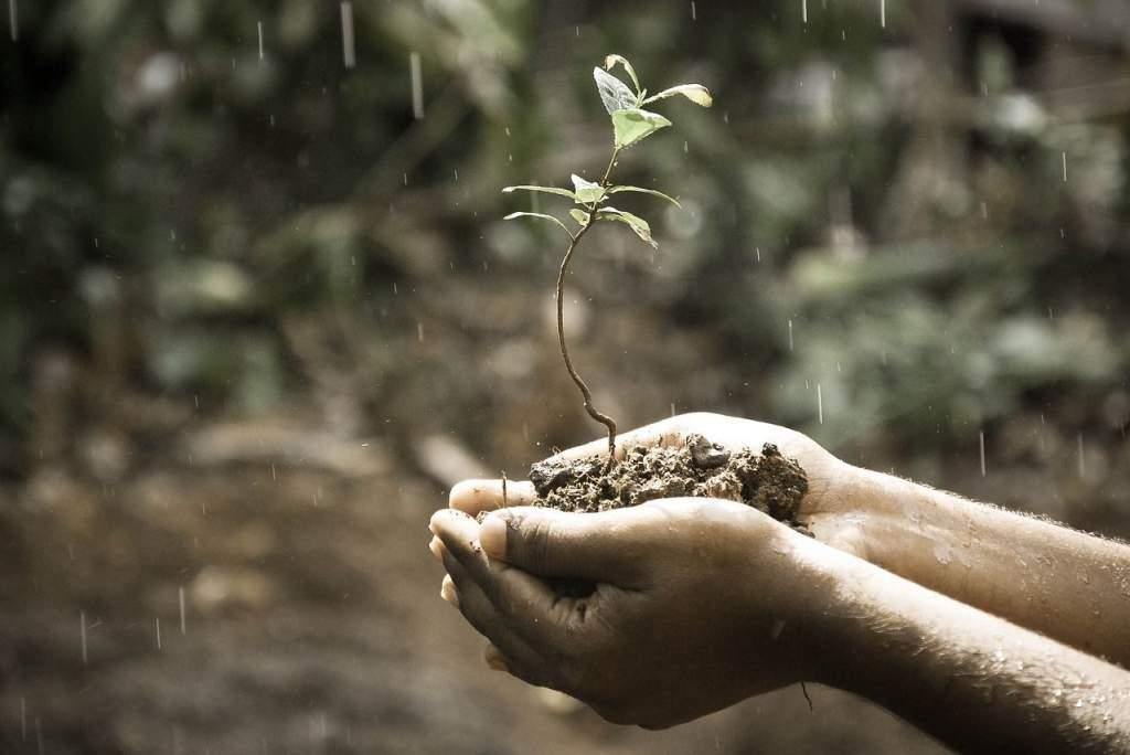 12 nap alatt esik le az éves globális csapadékmennyiség fele