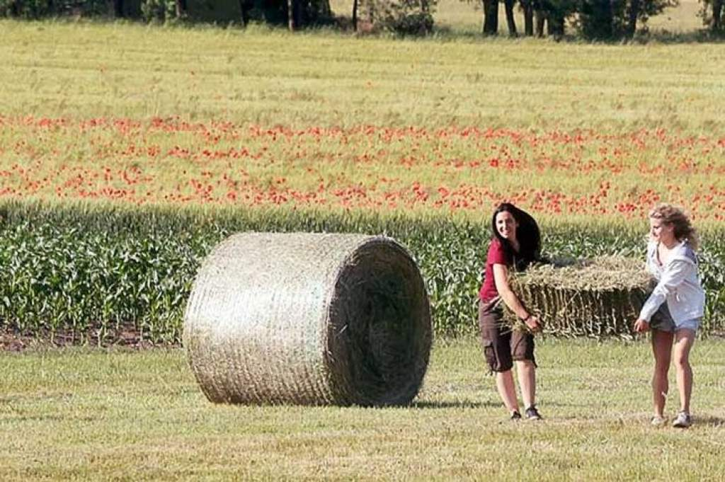 Vidéki élet, fiatalok vidéken