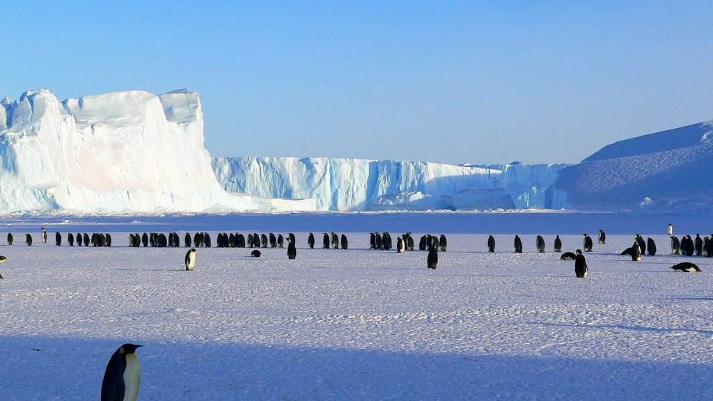 Kritikus mértékben olvad az Antarktisz jege