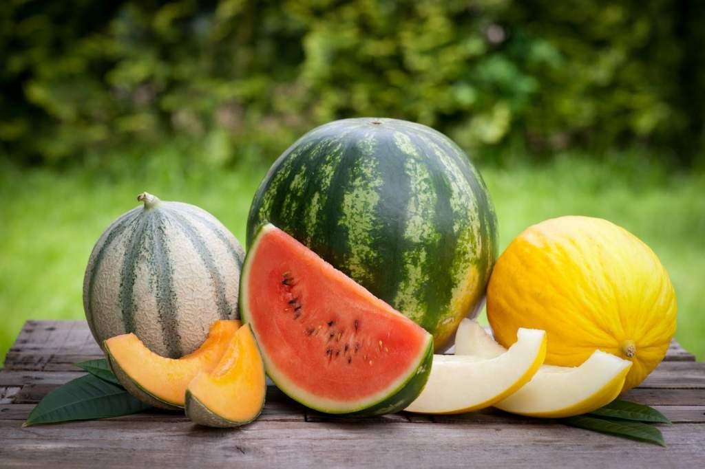 Sárgadinnyéből 20 ezer, görögdinnyéből 200 ezer tonnás hazai termés várható