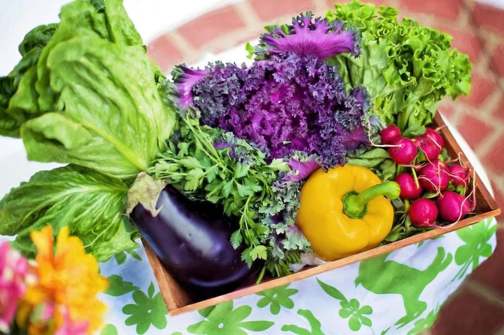 Jó évre számíthat a zöldségágazat
