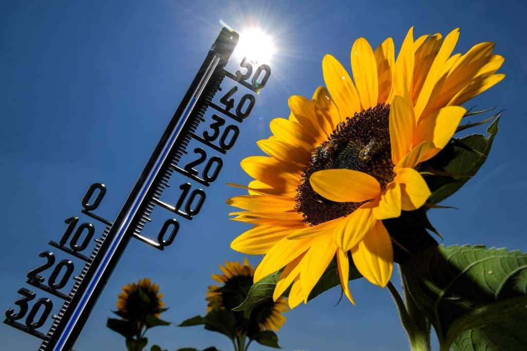 A második legmelegebb nyár 1901 óta