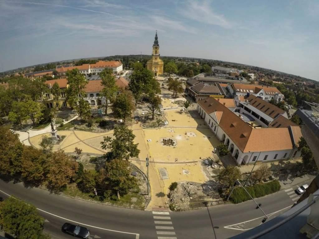 Kiválasztották Félegyháza Hollandiából érkező új fáit