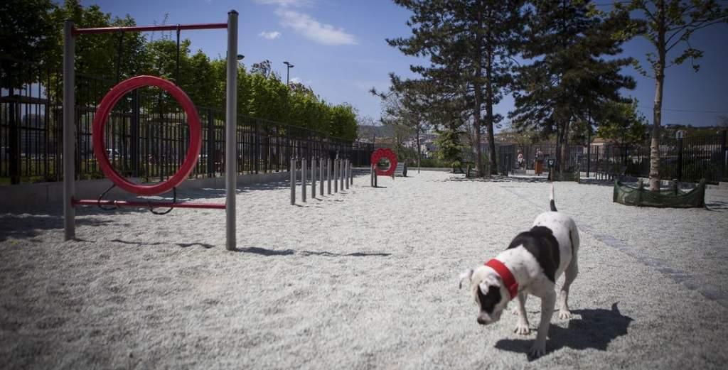 A Hősök parkjában kap helyet a kutyafuttató