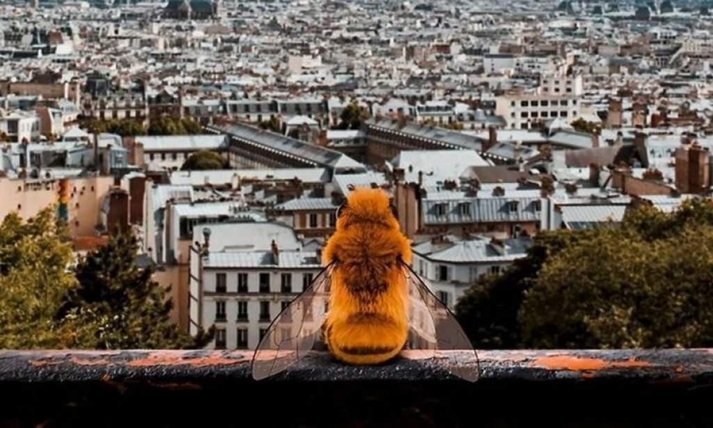 A valaha volt legaranyosabb kampány a méhek védelmében