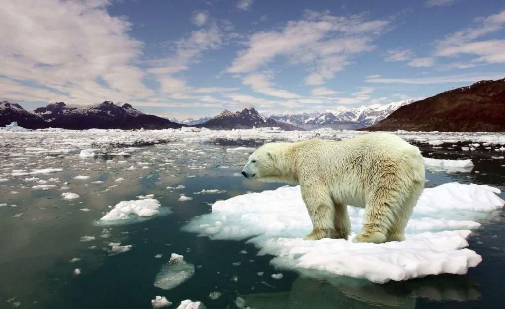 2019 egy meleg és pusztító időjárási eseményt hozó évtized záró éve