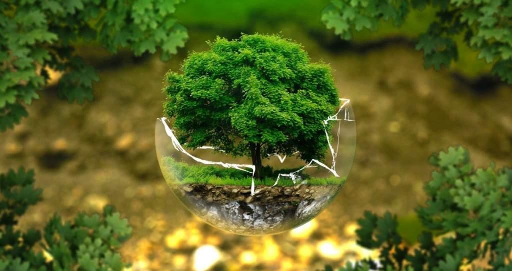 Az ökológiai nyomás hatásai a mezőgazdálkodásban