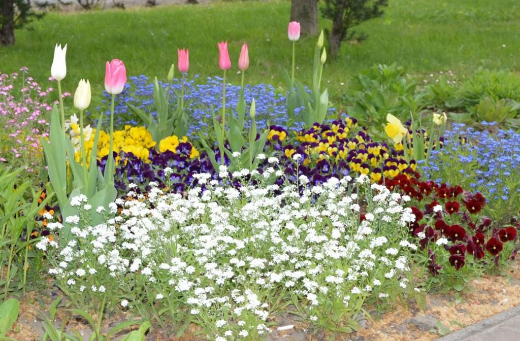 Négy hektár közterületet fest színesre idén a tavasz