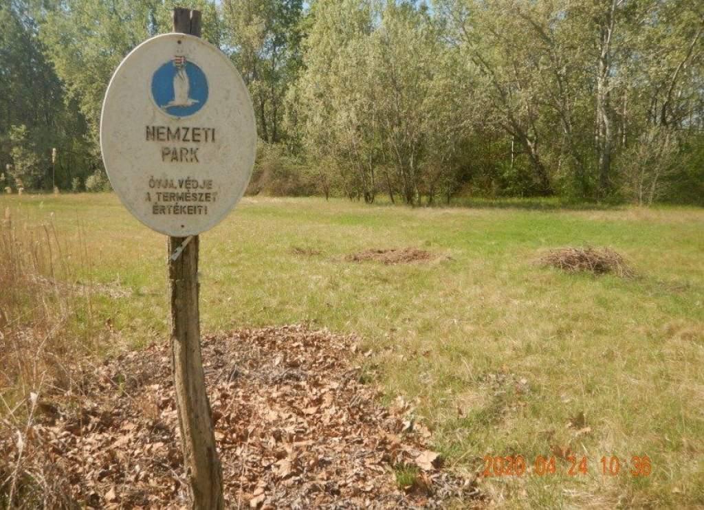 Veszélyes a kerti zöldhulladék a természetes élőhelyekre!