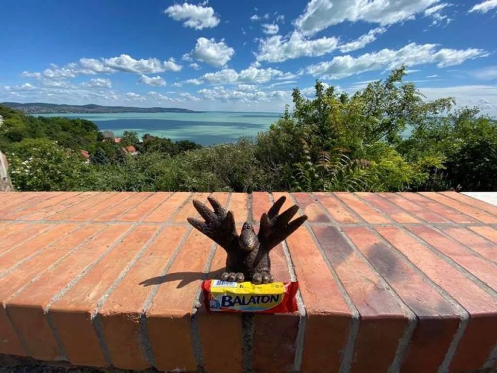 Gombóc Artúr a Balatonnál vár, hogy vigyél neki csokit! - videóval