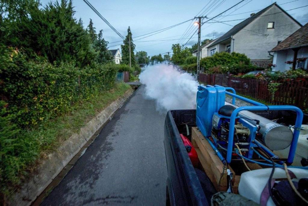 Szúnyogirtás lesz Félegyházán