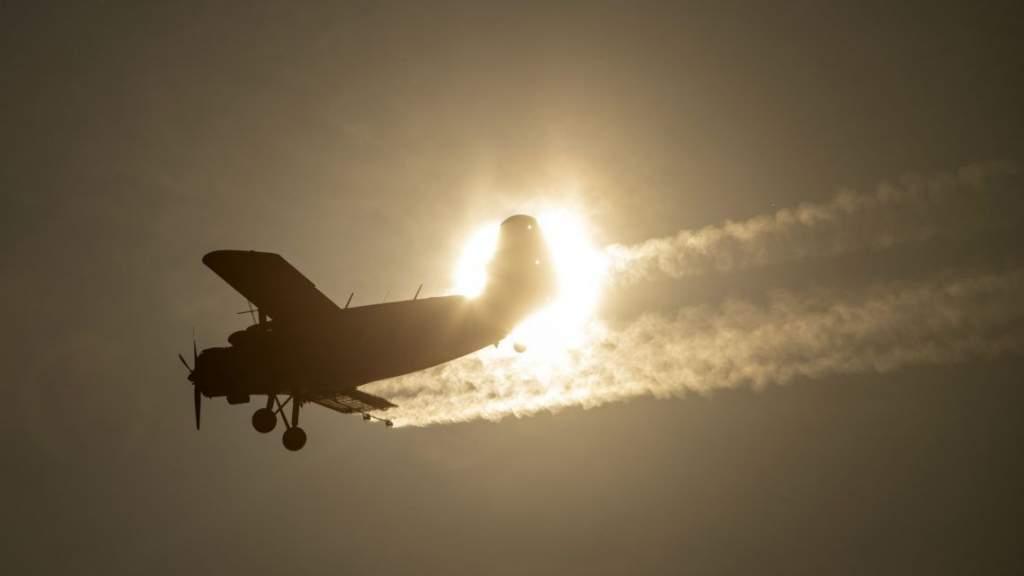 Légi szúnyogirtás lesz Félegyházán – videóval