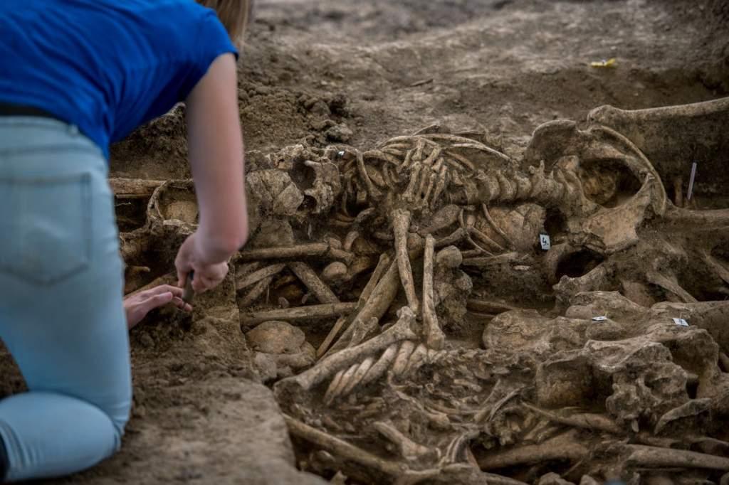 Fél évezred után végtisztességet kapnak a mohácsi hősök