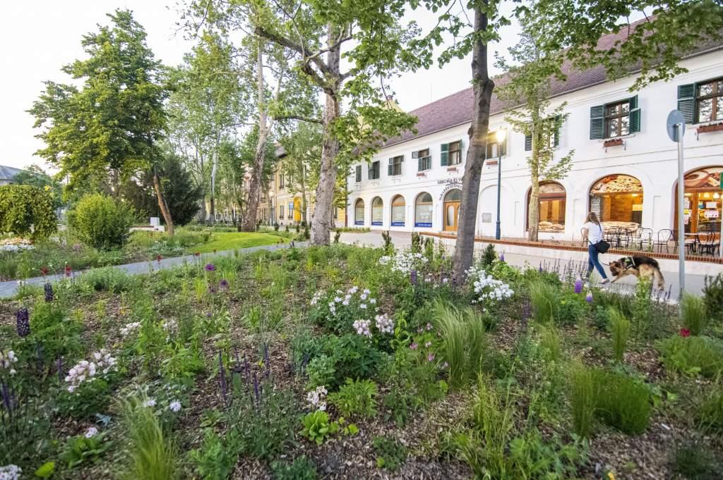 Új ökológikus parkok és kertek Félegyházán