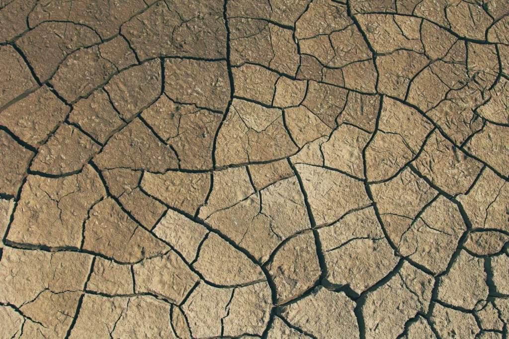Vízvisszatartással az elsivatagosodás ellen
