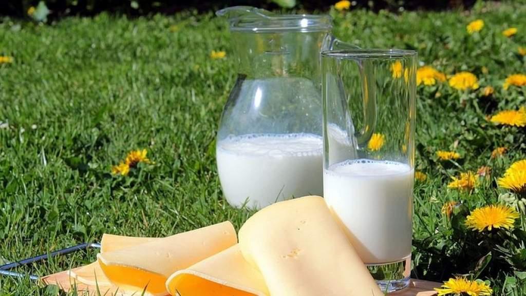 Felfedezték a tejipar legnagyobb innovációját