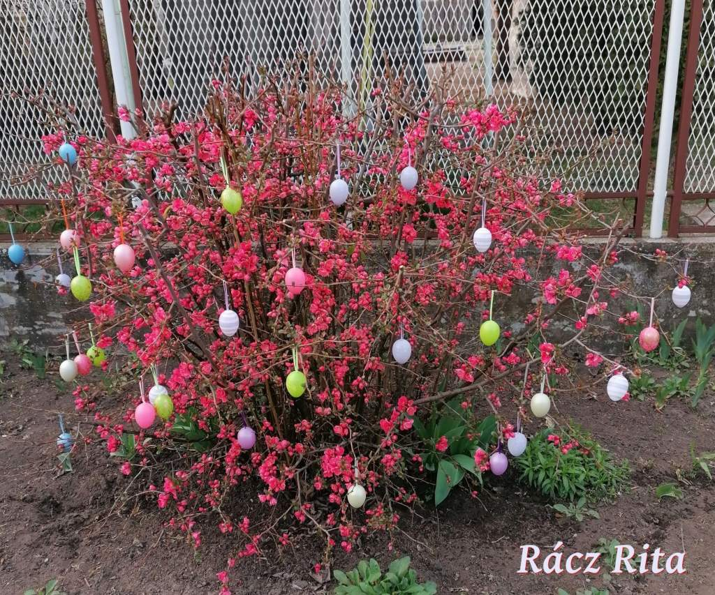 Húsvéti díszeiket és verseiket tették közkinccsé
