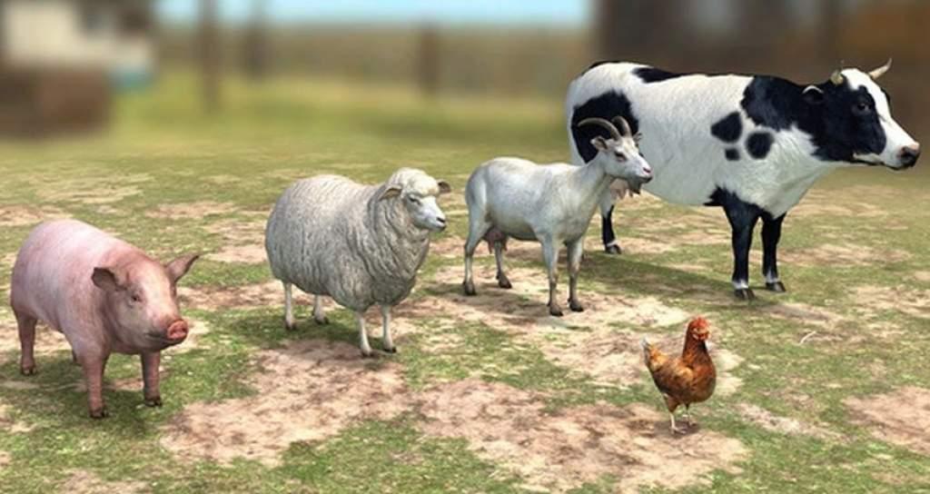 A hazai állatállomány megyei megoszlásban