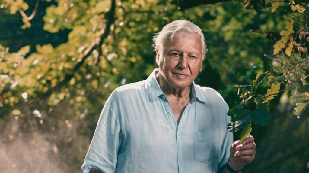 95 éves Sir David Attenborough, Földünk idegenvezetője
