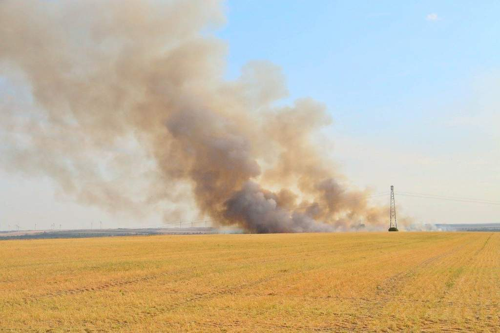A nagy hőségben több a mezőgazdasági tűz