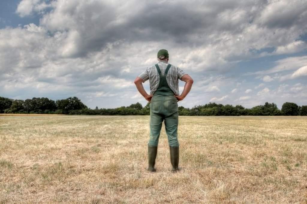 Feladták a harcot a helyi gazdák