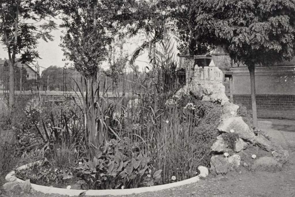 Titkok a levéltárból – A tanítóképző botanikai kertje