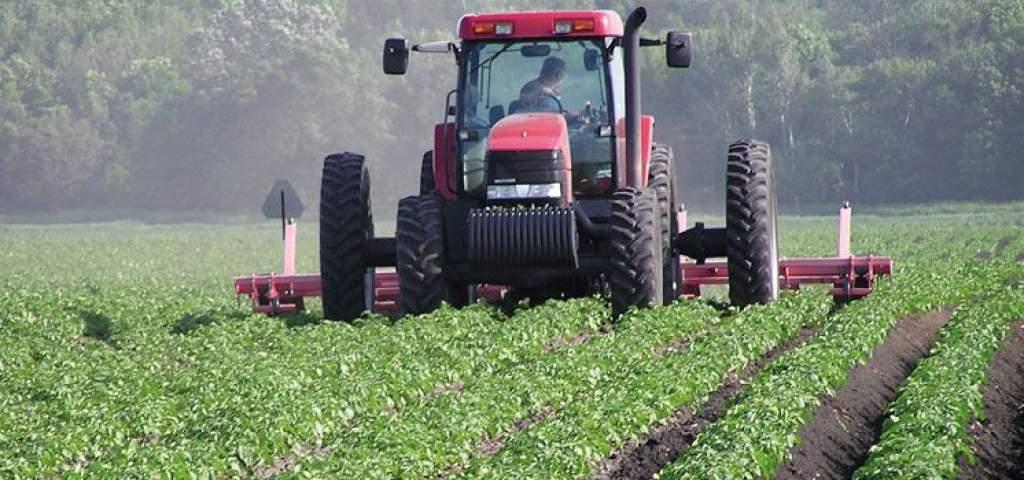 Még van idő az agrárpályázatokra