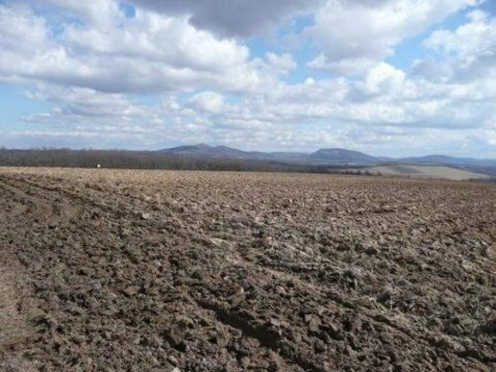Folytatódnak a földárverések a megyében