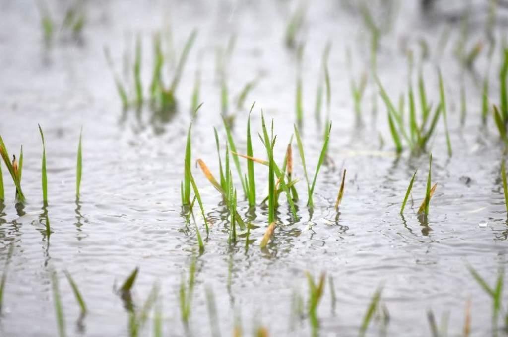 Már több mint 76 ezer hektár van víz alatt