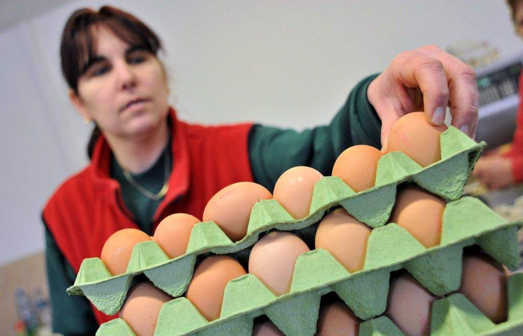 Sürgősen csökkenteni kell az áfakulcsot a tojáspiacon