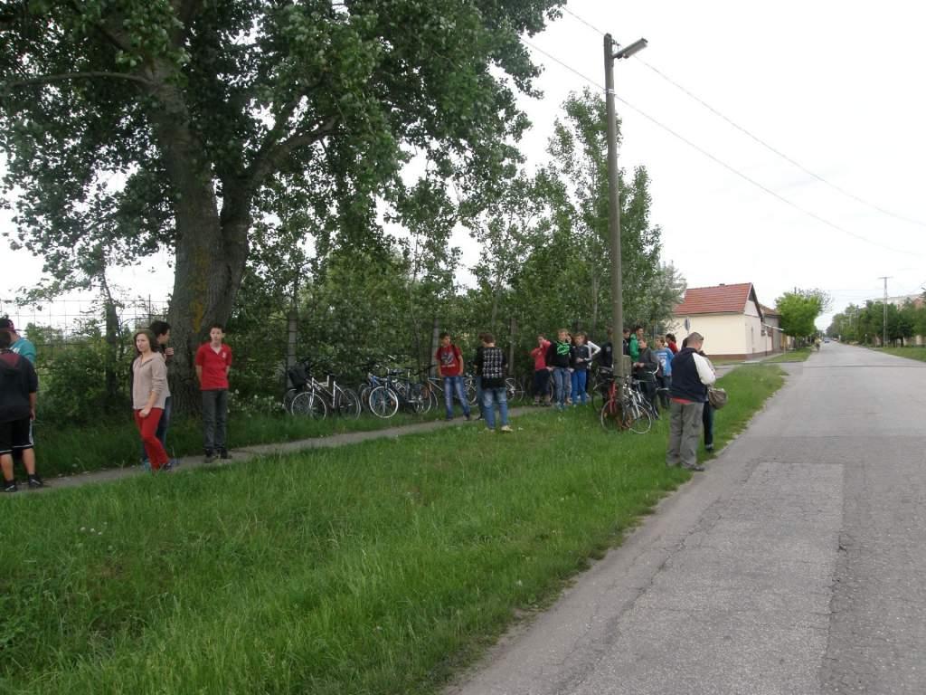 Tanárok és diákok együtt gyűjtötték a szemetet