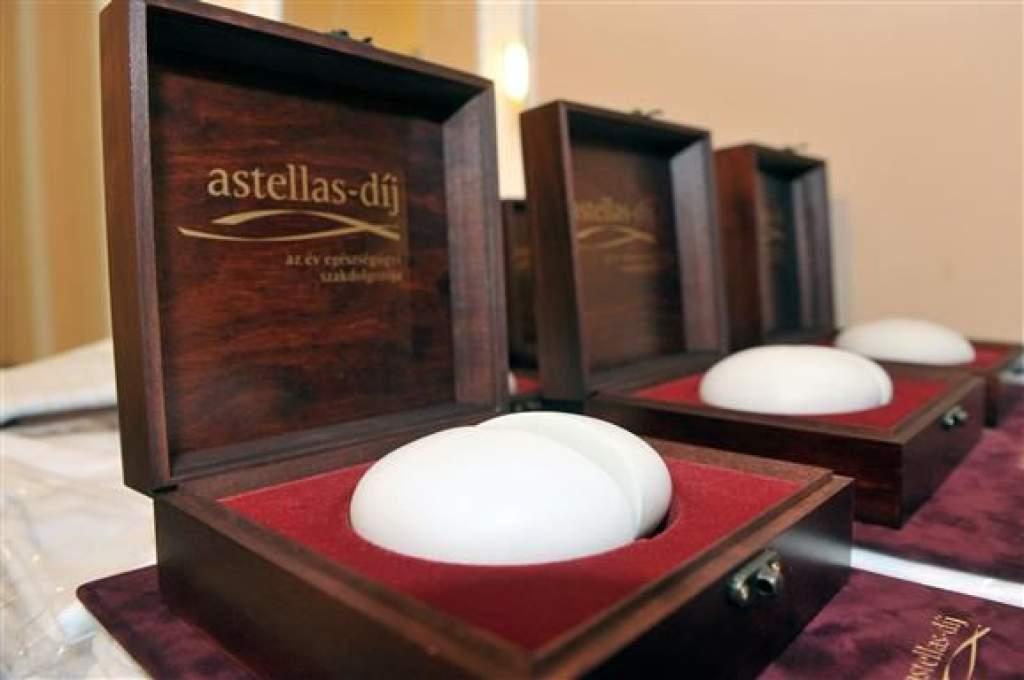 Kihirdették az Astellas-díj nyerteseit