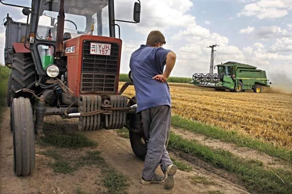 20 milliárdos pályázat a mezőgazdasági termelőknek
