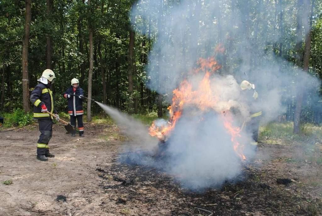 V. Országos Erdőtűzvédelmi Konferencia