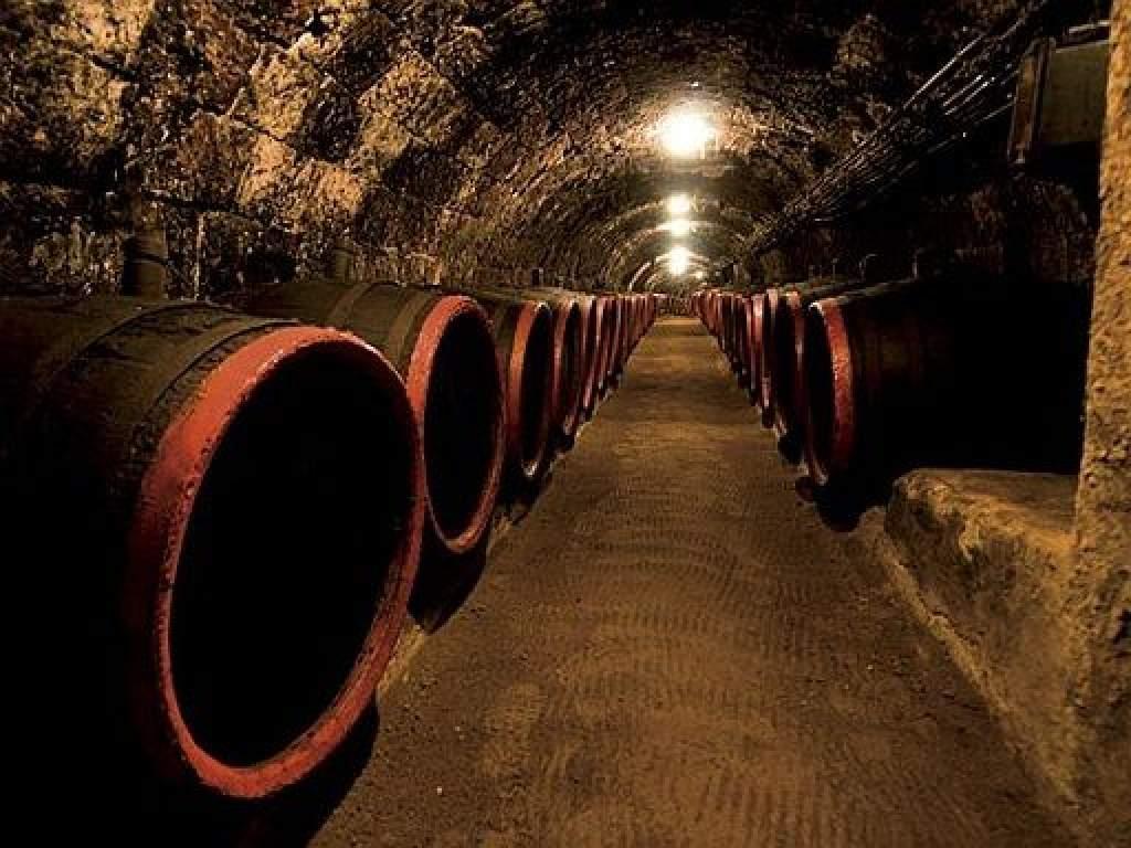 40 milliárd forint a borászati beruházásokra