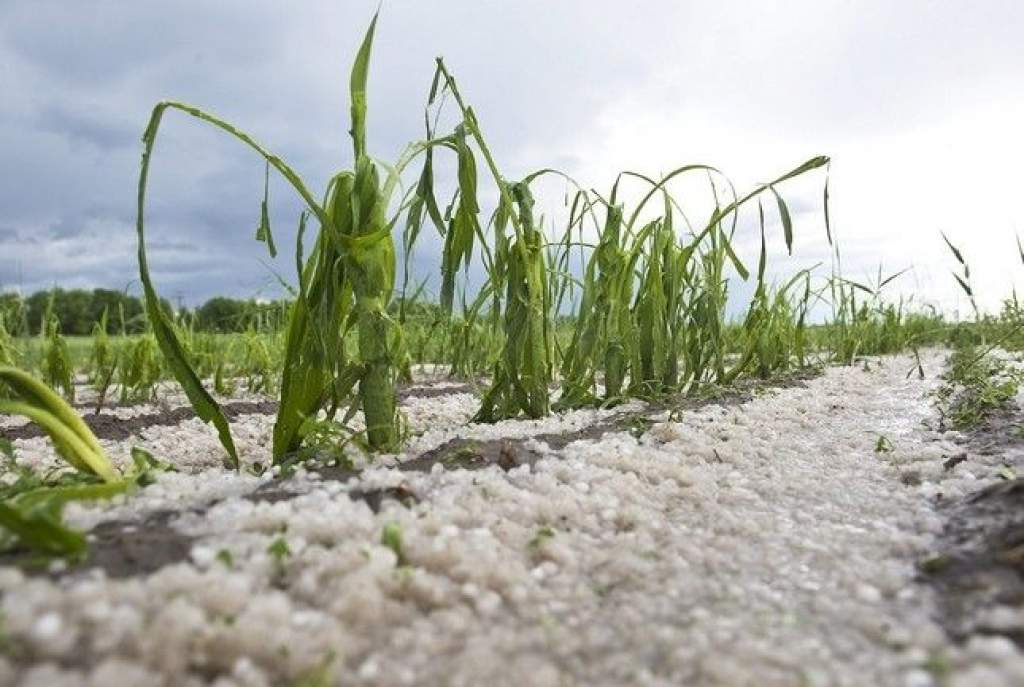 Országossá bővül a talajgenerátoros jégeső-elhárítási rendszer
