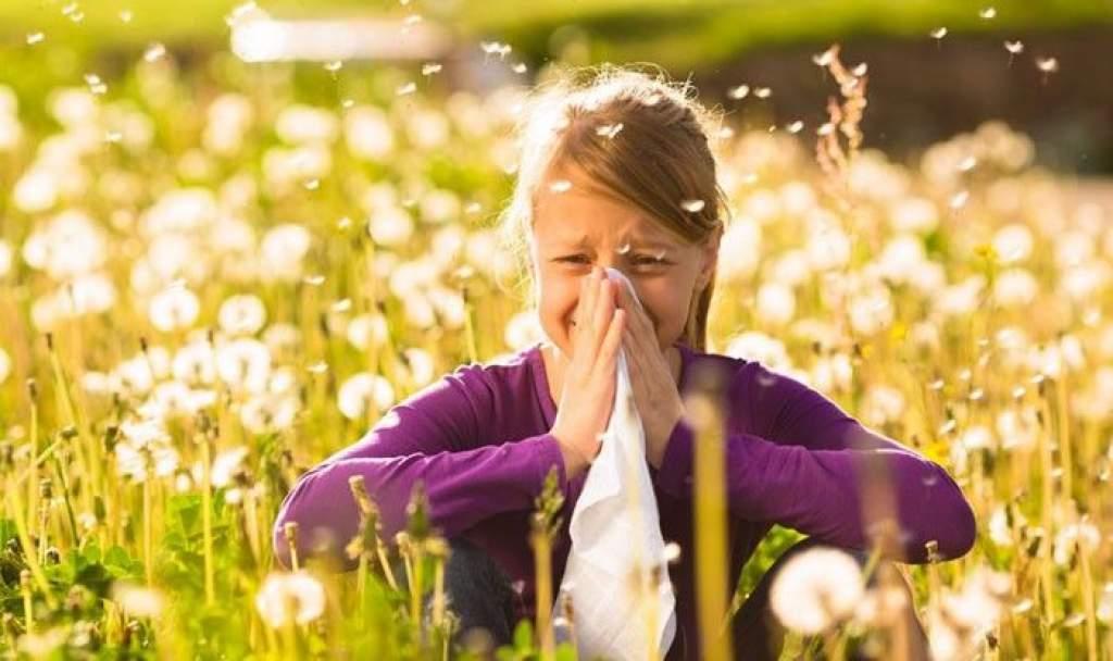 A jövő héten tovább emelkedhet a pollenkoncentráció