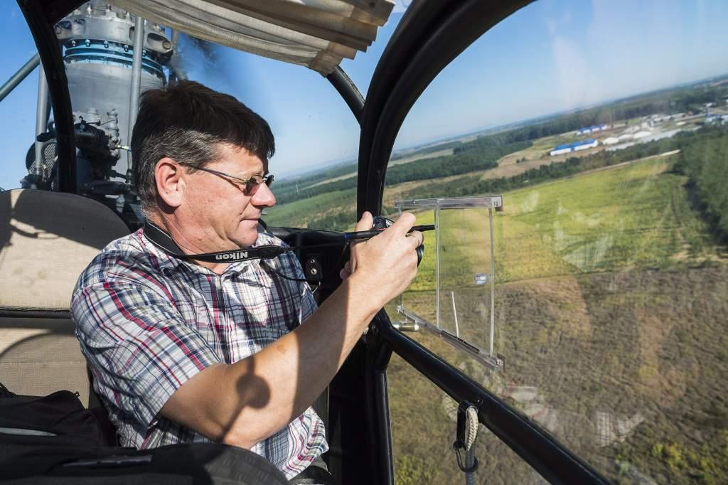 Helikopterről is ellenőrzik a parlagfüves területeket