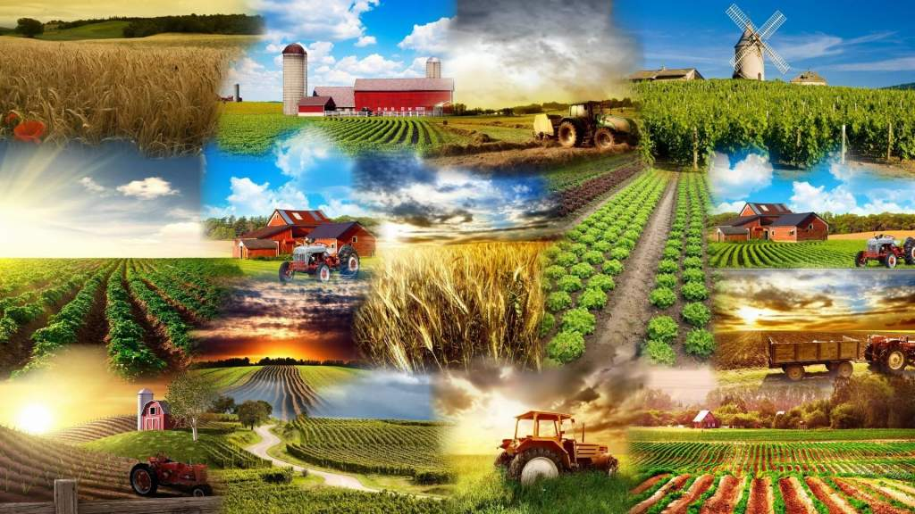 22 ezer agrártámogatási igény érkezett be