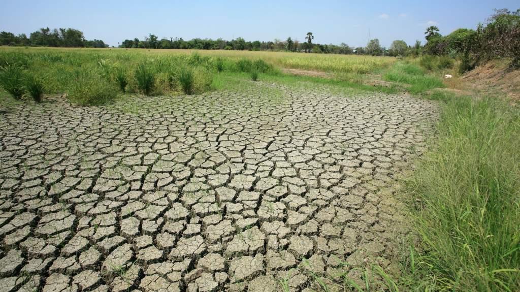 A vidékfejlesztés nélkül megállíthatatlan a klímaváltozás okozta elvándorlás