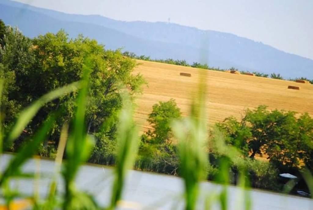 Terítéken a vidékfejlesztés