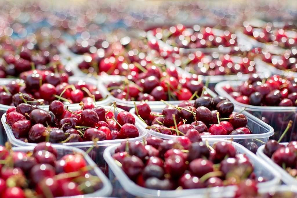 Már szedik a cseresznyét, július közepéig tart a szezon