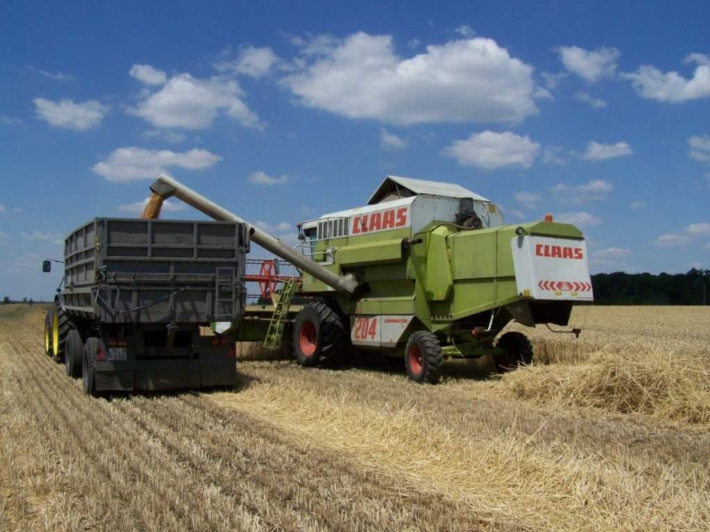 Már 5 millió tonna gabona landolt a tárolókba