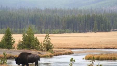 A világ első nemzeti parkját mutatták be a könyvtárban