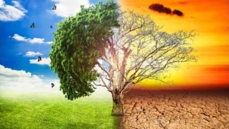 Klímaváltozás és kertészet