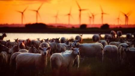 Alkalmazkodó mezőgazdaság a szélsőségek korában