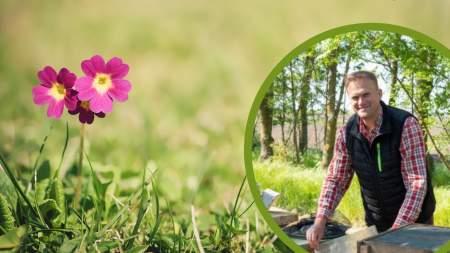Kertjeink titkai az egészségesebb életért