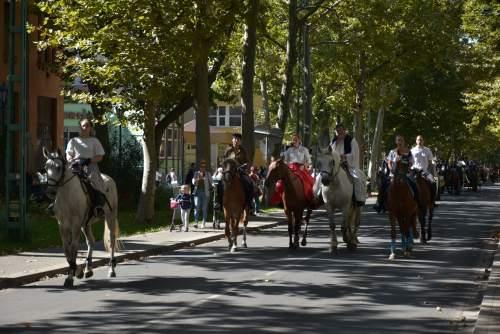 Gazdakörök hagyományos szüreti felvonulása volt a városban